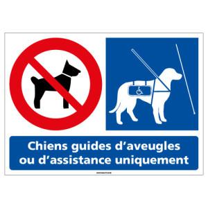 l0952_chiens_guides_uniquement-z
