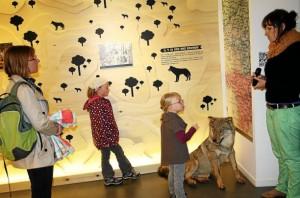 Visite guidée du Musée du Loup
