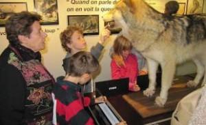 Visite guidée Musée du Loup
