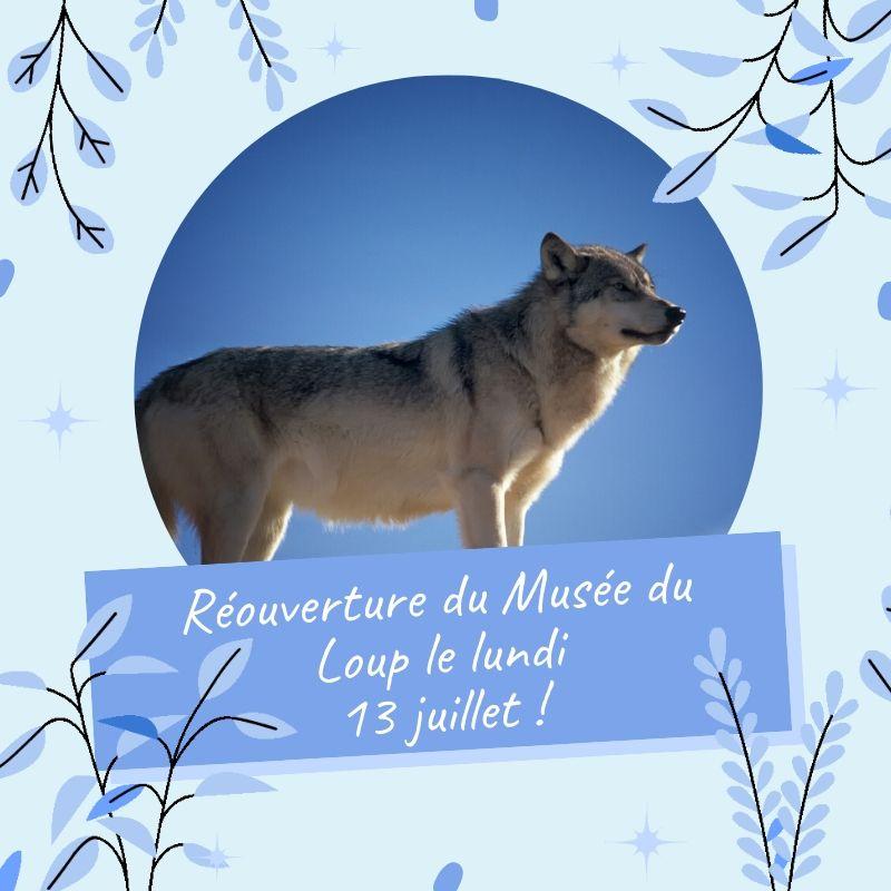 Réouverture du Musée du Loup le lundi 13 juillet !